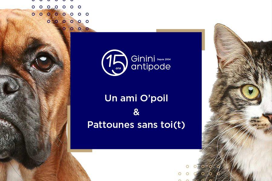 Ginini antipode Solidarité soutient la cause animale